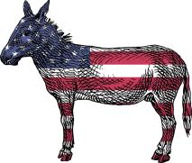 america-20254653